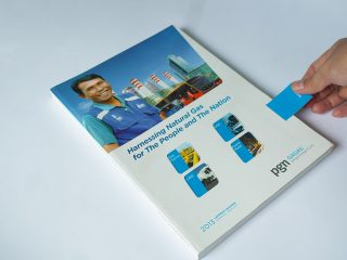 PGN GAGAS - 2013 Annual Report